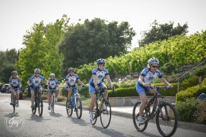 dmc Team Cycling